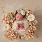 fort myers florida newborn photographer