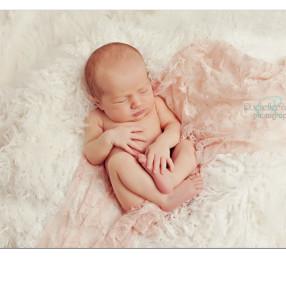 ft myers fl newborn photographer