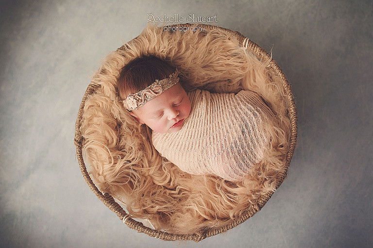 naples florida newborn baby photographer peditricians fort myers