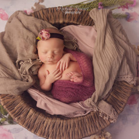 naples florida best newborn photographer